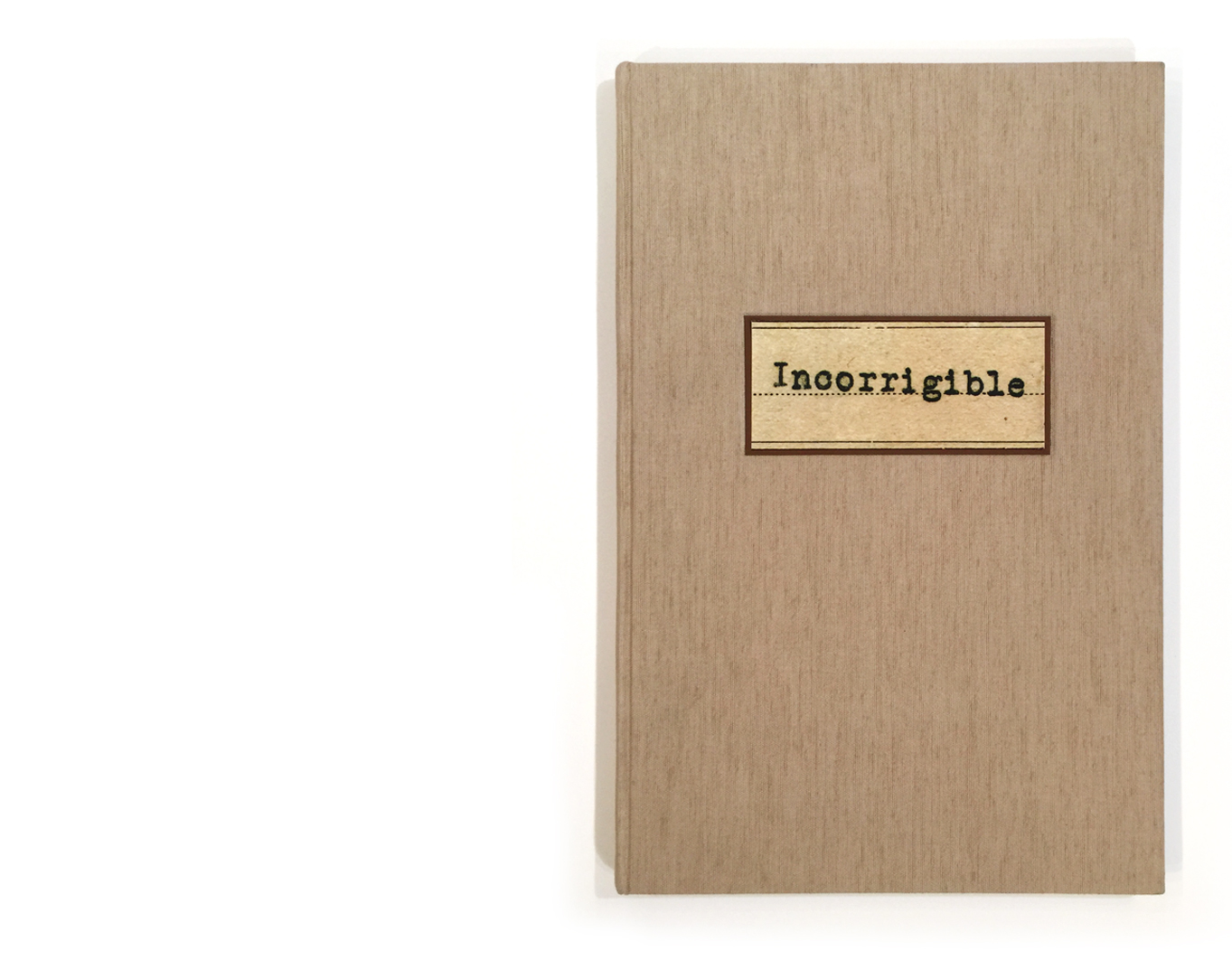 incorrigibles-book-pages